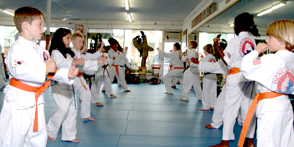 Action Karate Online